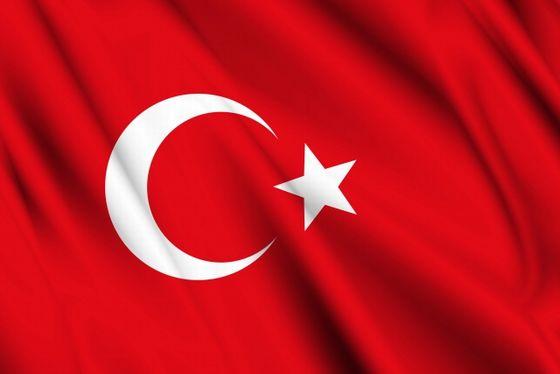 長期投資用で購入した20万通貨のトルコリラ/円の状況